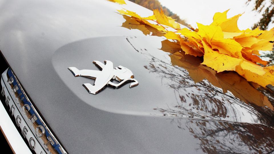 Падают листья, ну и пусть…